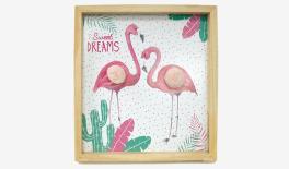 Φλαμίνγκο - Flamingo