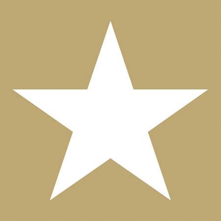 Χαρτοπετσέτες Γλυκού Star Gold 25x25cm 20τεμ.