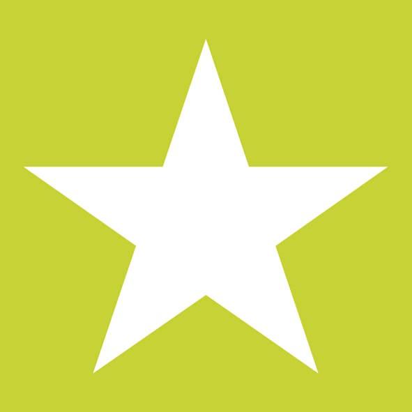 Χαρτοπετσέτες Γλυκού Star Summer Green 25x25 cm 20τεμ.