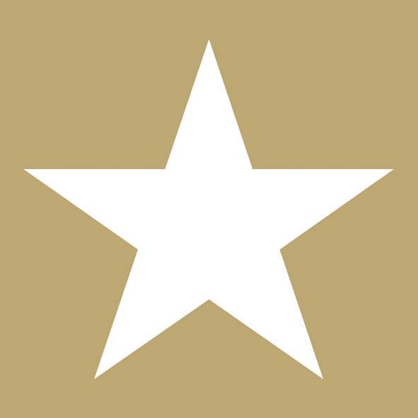 Χαρτοπετσέτες Φαγητού Star Gold 33x33cm 20τεμ.